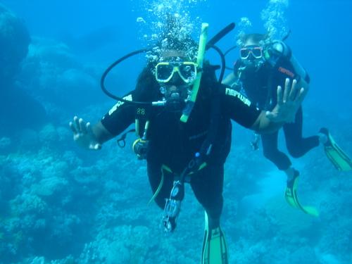Cairns_pro_dive_sanyu_underwater