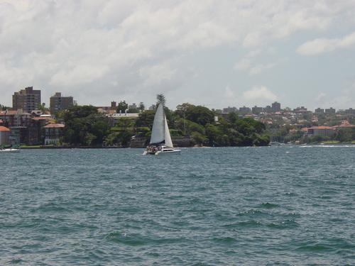 Sydney_harbor_boat