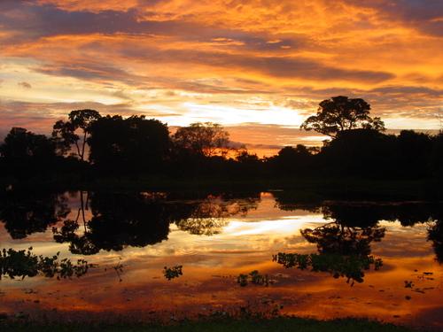 pantanal_sunrise