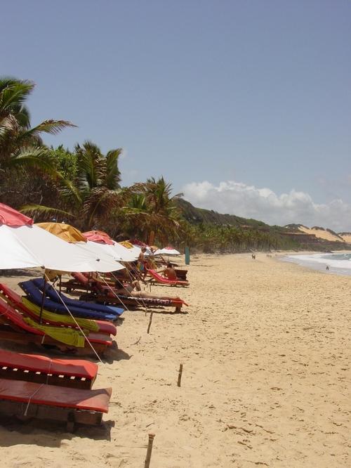 praia_de_pipa_amor_dolphin_beach_umbrell