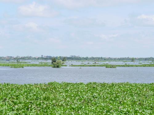 Phnom_phen_killing_fields
