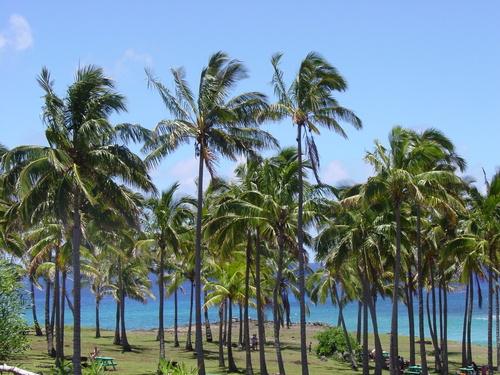anakena_beach