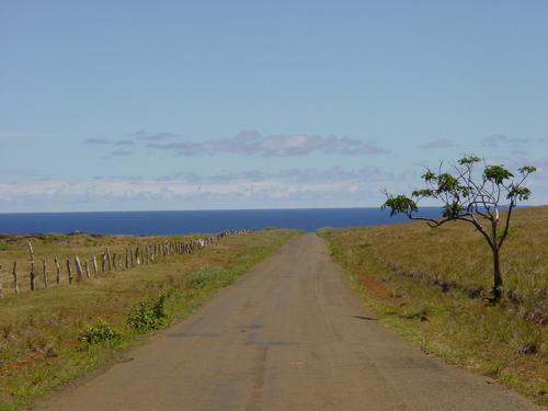 road_to_anakena