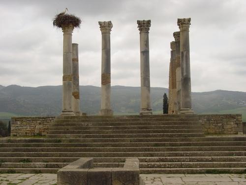 Volubis_columns