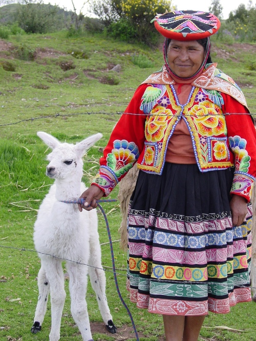 Cusco_site_i_woman_with_baby_llama