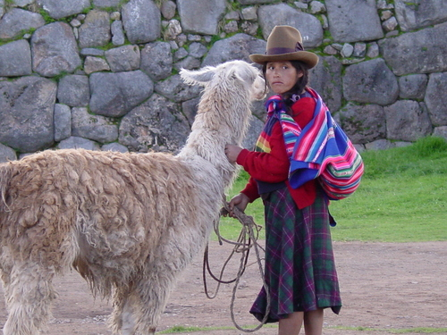 Cusco_site_i_woman_with_llama_ii