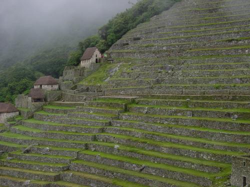 Machu_pichu_terraces_ii
