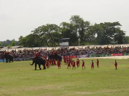 Surin_elephant_festival_elephant_battle_