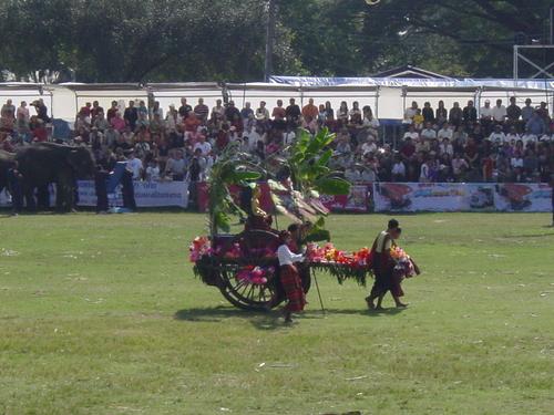 Surin_elephant_festival_elephant_flower__1