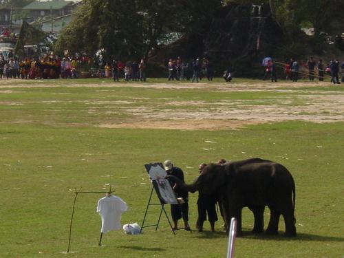 Surin_elephant_festival_elephant_paintin