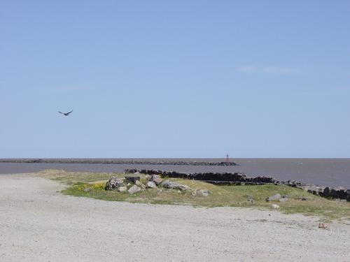 Colonia_beach